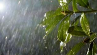 Obr. Odolné proti vlivům počasí (IP44) 1446250d
